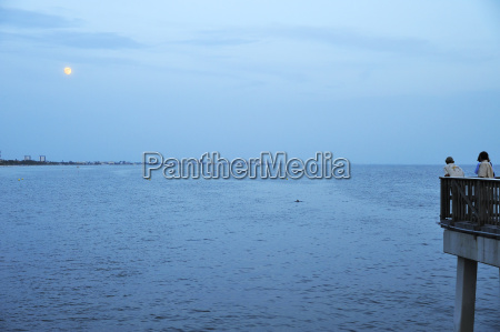 usa florida fort myers beach delfini