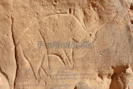 arte parco nazionale africa rocce roccia
