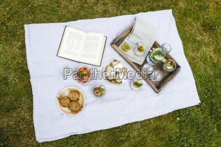 picnic con spuntini vegetariani sul prato
