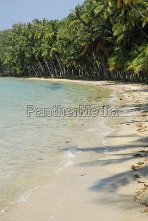 la tailandia spiaggia tropicale con le