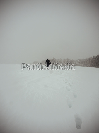 germania foresta nera uomo che cammina