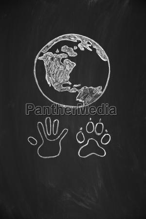 mano umana e zampa animale riunite