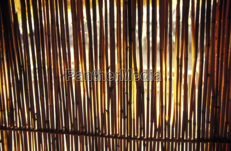 legno marrone orizzontale allaperto fotografia foto