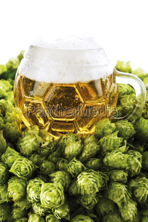 glass of beer in bunch of