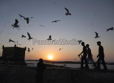 marocco essaouira persone al porto con