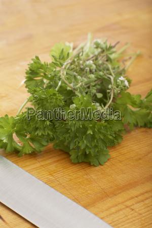 spezia freschezza cucinare cucina verdura preparazione