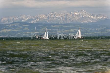 germany friedrichshafen view of sailing boats