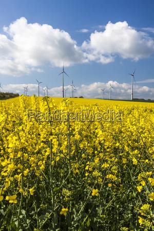 extraction of renewable energy