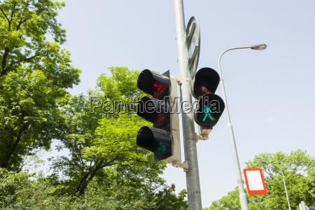 albero traffico praga allaperto direzione segnale