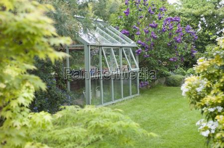 bicchiere stile di vita giardino fiore