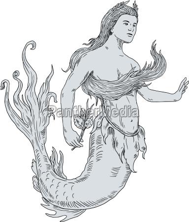 vintage mermaid holding flower drawing