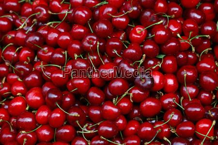 fresh red cherries on retail market
