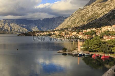 viaggio viaggiare colore albero caucasico europeo