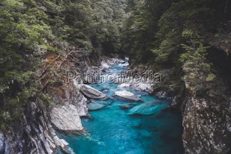 blu luce viaggio viaggiare colore albero