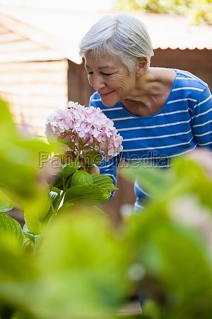 donna blu risata sorrisi foglia stile