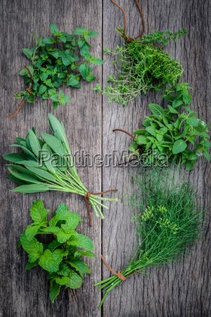 varie erbe aromatiche e spezie da