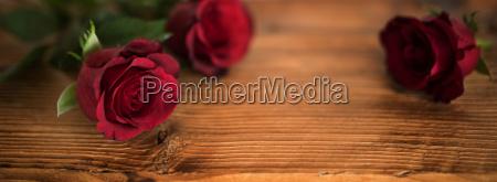 belle rose rosse per il giorno