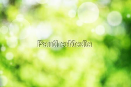 astratto verde brillante bokeh sfondo