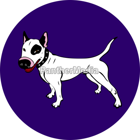 cane bianco bull terrier bianco dipinto