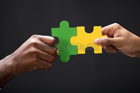 persone popolare uomo umano puzzle parte