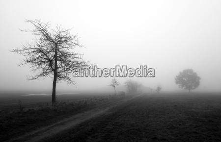 nebbia distanza larghezza estensione quiete silenzio