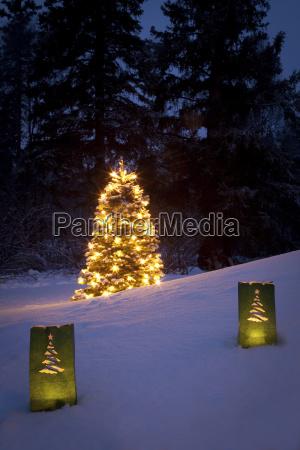 vacanza albero inverno notte illuminato candela