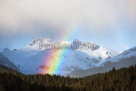 arcobaleno e docce intermitant nella foresta