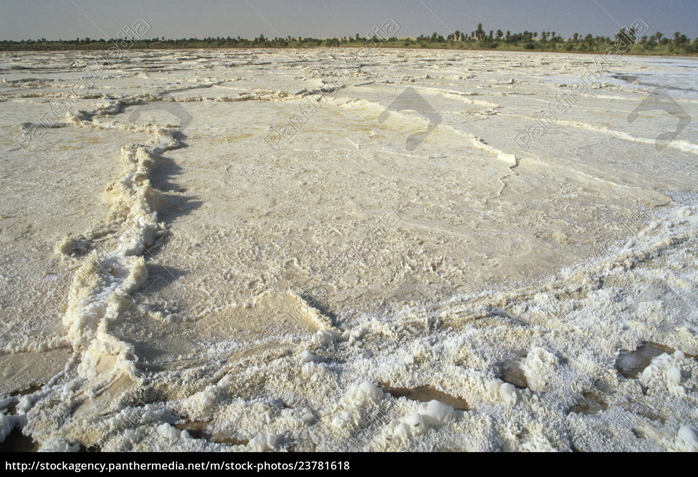 sebkha, , , salzpfanne, an, der, oase - 23781618