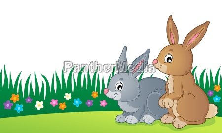 rabbit topic image 7