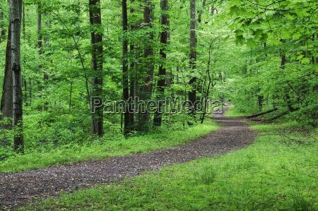 un percorso panoramico e vuoto