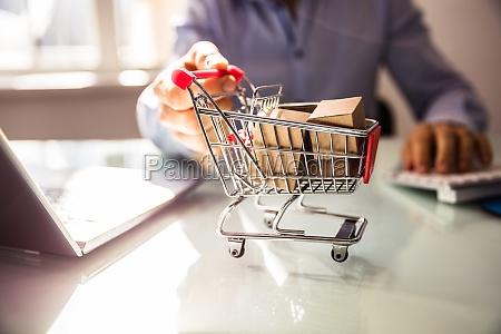 portatile computer pagare sacchetto negozio acquirente