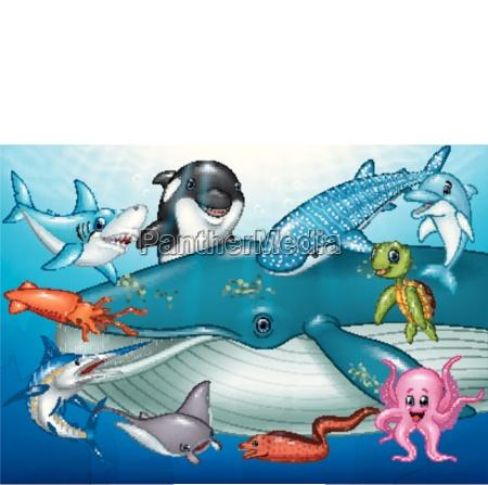 animali marini dei cartoni animati