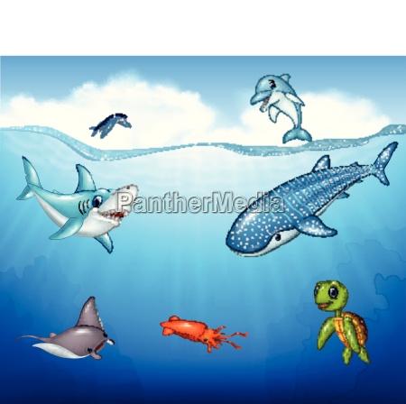 animali del mare del fumetto