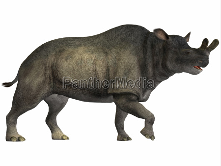 animale dinosauro erbivoro preistorico