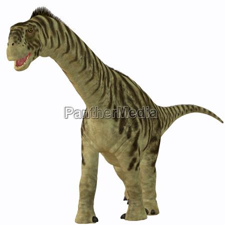 animale rettile lucertola dinosauro erbivoro giurassico