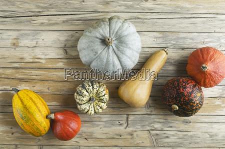 cibo accordo legno freschezza frutta fotografia