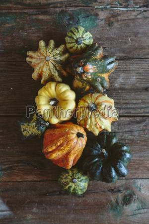 varie zucche ornamentali su legno