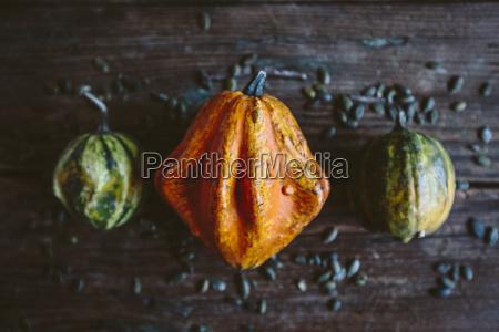 zucca ornamentale arancione