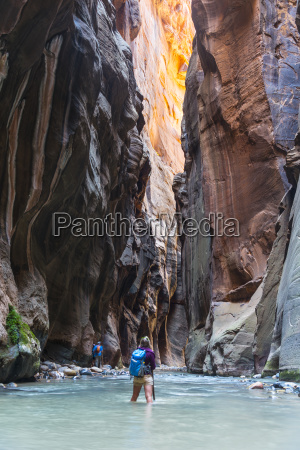 wanderin stands in the river zion