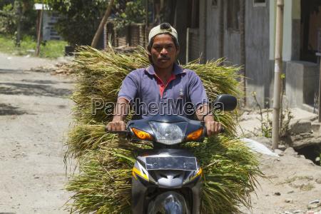 uomo su un motociclo che trasporta