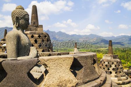 statua del buddha in mezzo agli
