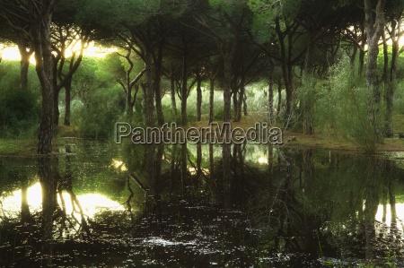 tranquillo panoramico