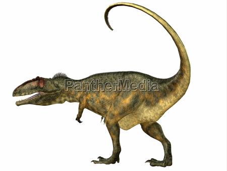 rettile lucertola predatore dinosauro