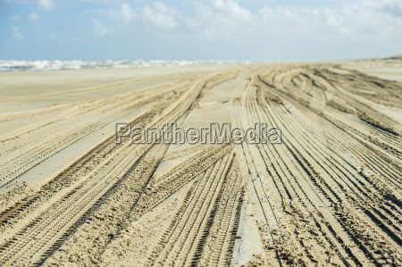 tire tracks in the sand on