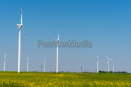 some wind turbines in a blooming