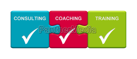 3 puzzle buttons showing consulting coaching