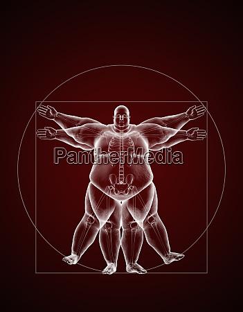 soprappeso vitruvian man