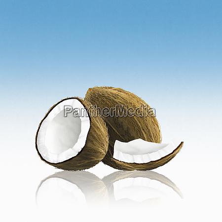 ganze kokosnuss mit stuecken
