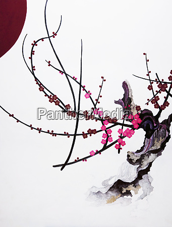 pink blossom growing from gnarled branch