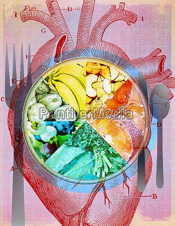 piatto, di, diversi, tipi, di, cibo - 26010152
